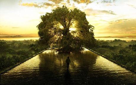 mand_mod_træ.JPG