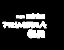 MINHA PRIMEIRA OBRA - 3 Branco.png