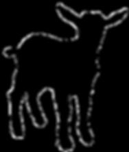 Goat Nigerian Kid.png
