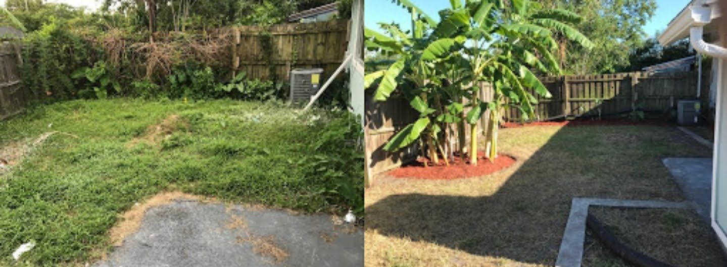 Lawn Clean-Up, Fernandina FL