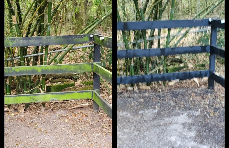 Fence softwash