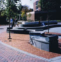 10Scr. C. low angle benches.jpg