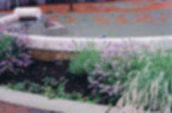 SC planting.jpg