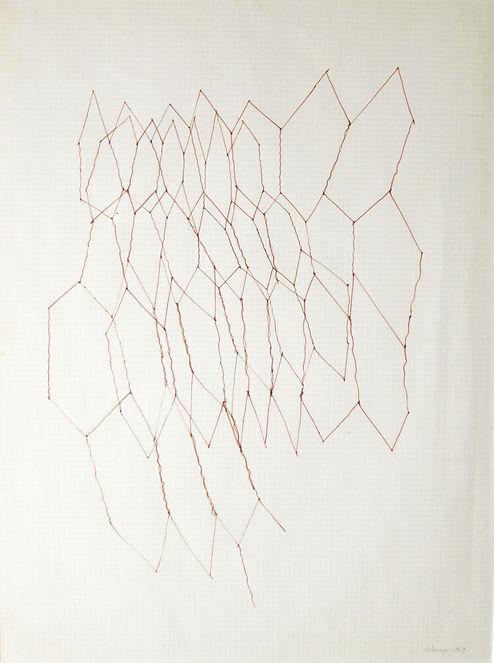 Distorted Grid CWD.jpg