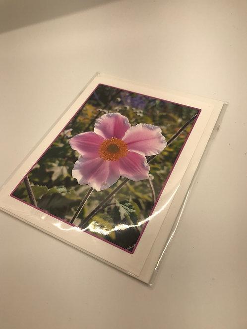 Handmade Cards by Ursula