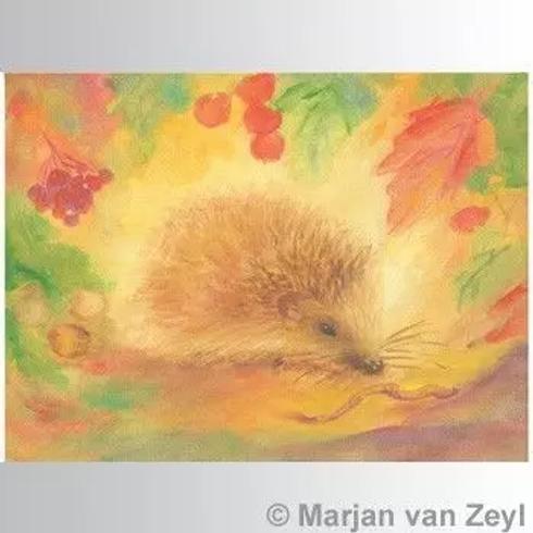 Marjan van Zeyl Postcards -Hedgehog