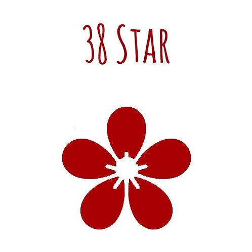 38 Star Felting Needle