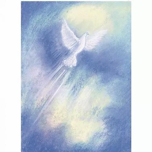 Marjan van Zeyl Postcards -Spirit