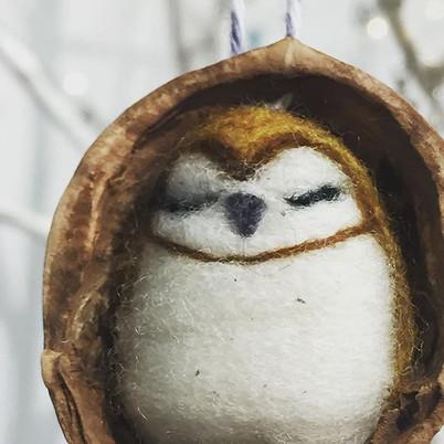 Best caption wins a wee owl. #tiny #owls