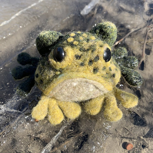 Frog Kit by Going Gnome