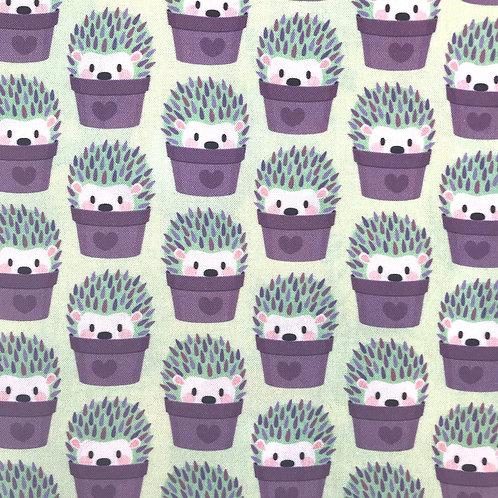 Hedgehogs Disguised as Cactuses
