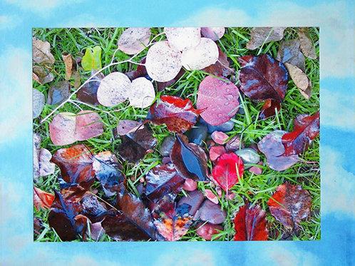 """After the Rain"" by Cindy Medlynn"