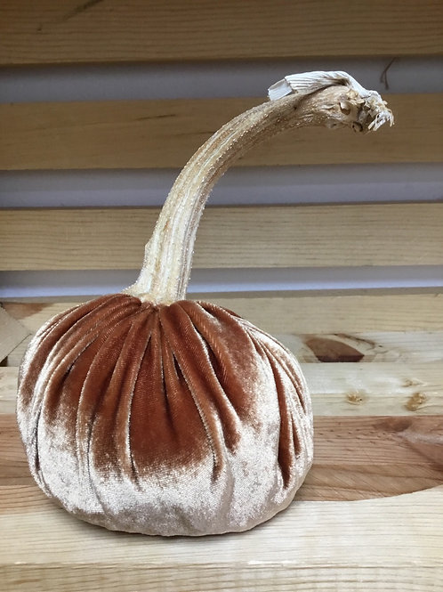 Tan Silk Velvet Pumpkin