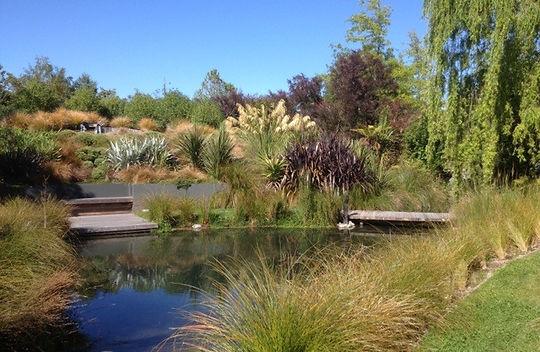 Blenheim garden Design creates NZ Native Harmony