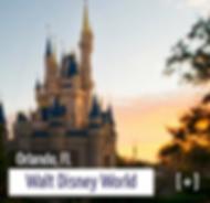 walt-disney-world.webp