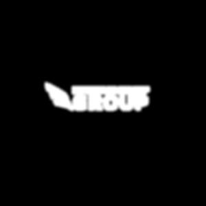 battle leadership logo white w_black bac