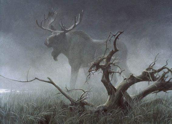 Moose in Moonlight - Robert Bateman