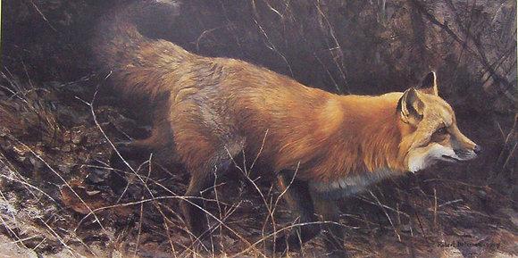 On the Move (Red Fox) - Robert Bateman