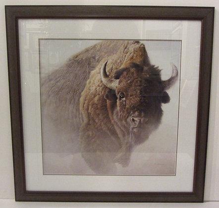 Charging Buffalo-Robert Bateman