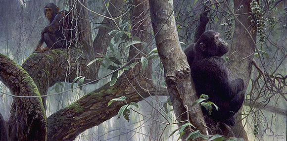 At Mahale (Chimpanzees) - Robert Bateman