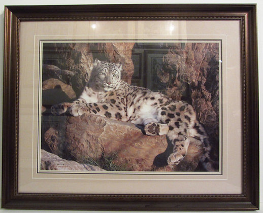 Ghost Cat and Snow Leopard - Carl Brenders