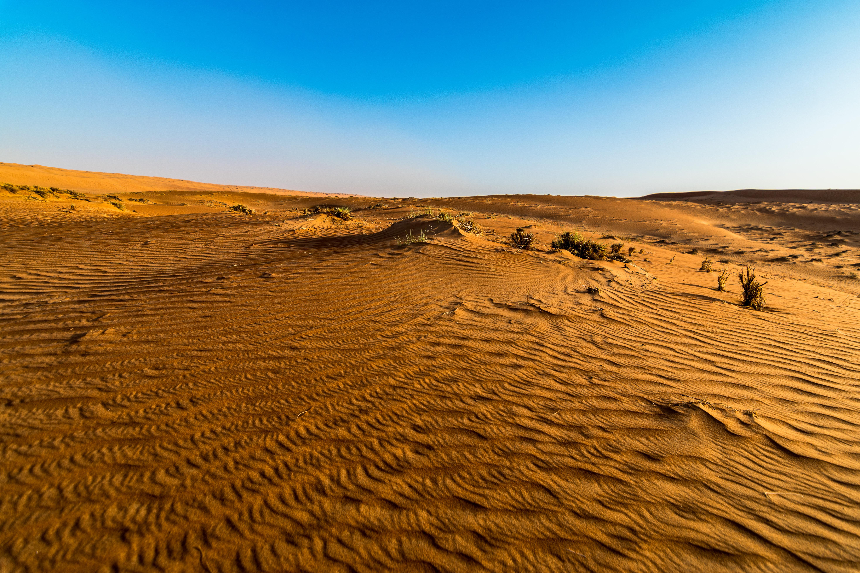 Wahiba Desert_3