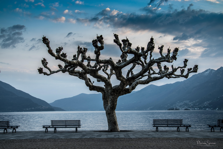03_Ascona