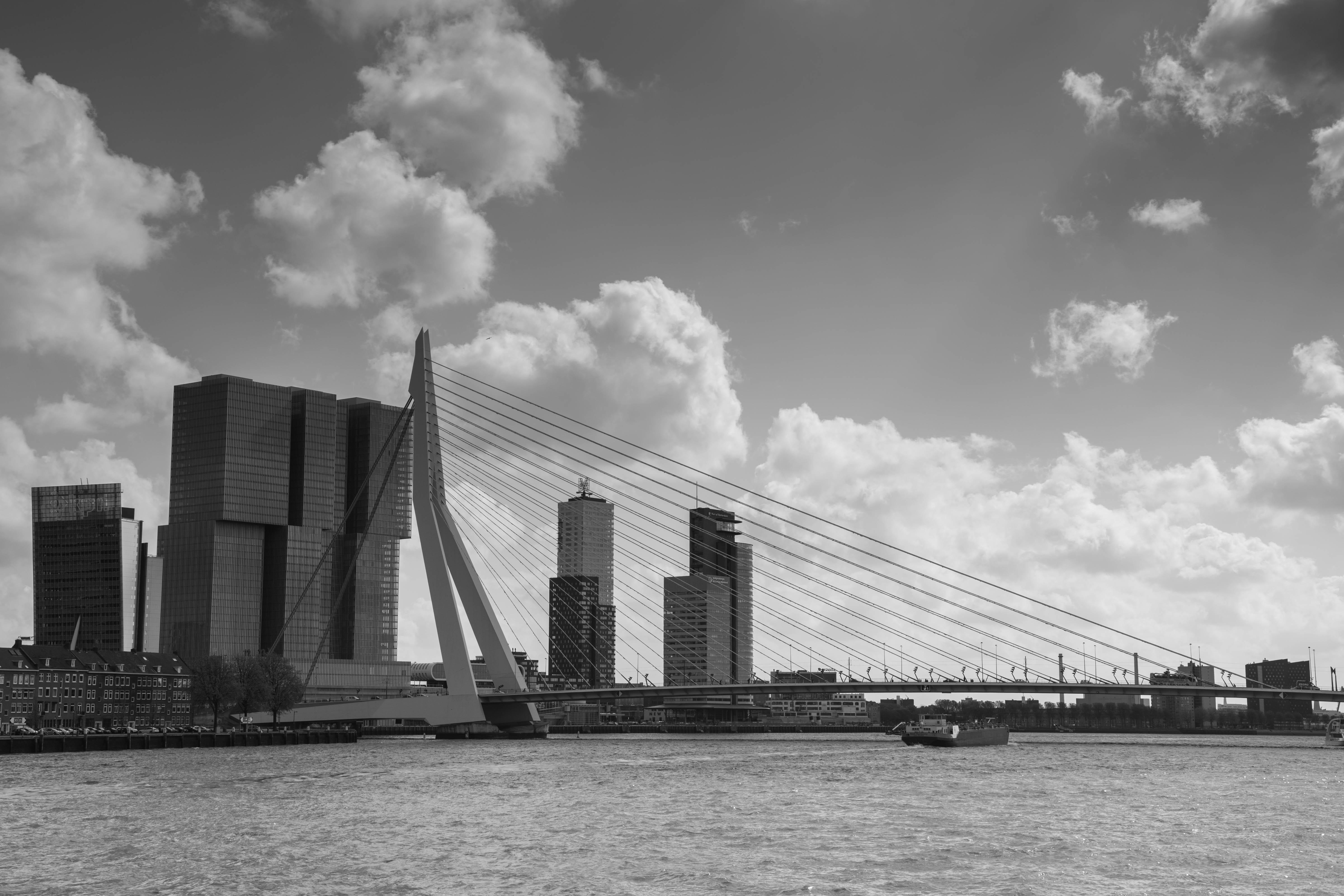 08_Erasmus bridge Rotterdam