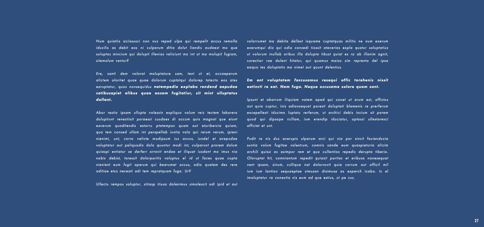 Wickes - Neil Harris - website 2 27.jpeg