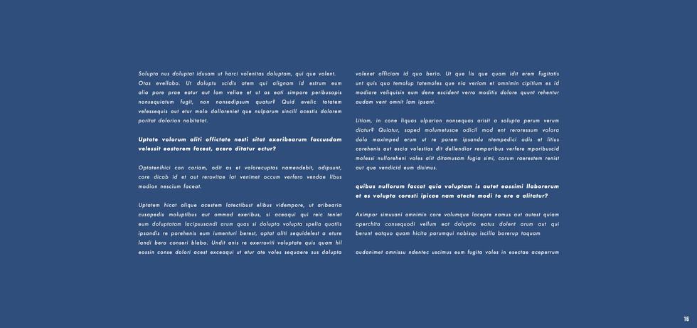 Wickes - Neil Harris - website 2 16.jpeg