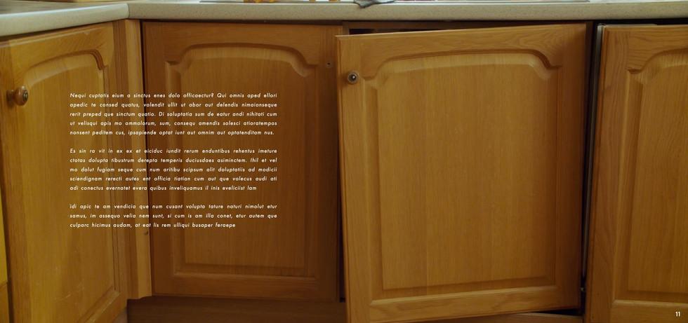 Wickes - Neil Harris - website 2 11.jpeg