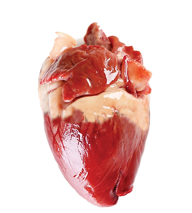 My Absolute Heart - Acrylic Pin Badge