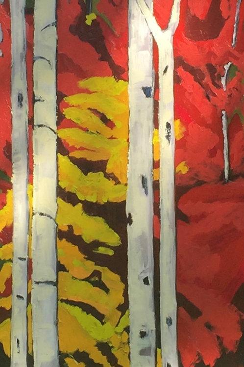 L'automne à St. Sauveur | Autumn in St Sauveur