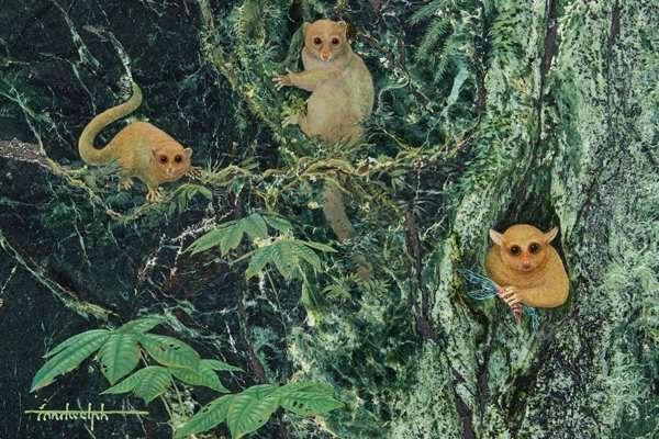 haberler-3-yeni-primat-keşfedildi-girls-