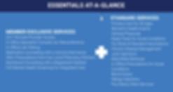 E3_EssentialsPlanWeb-02.png
