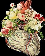 flower heart full.png