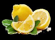 lemons-NO-BAK.png