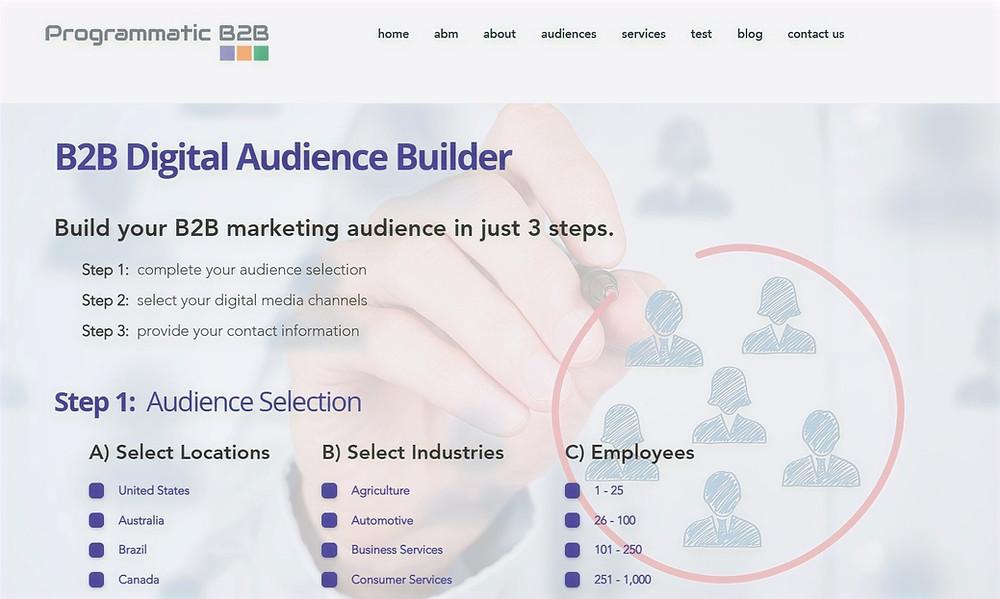 B2B Digital Audience Builder