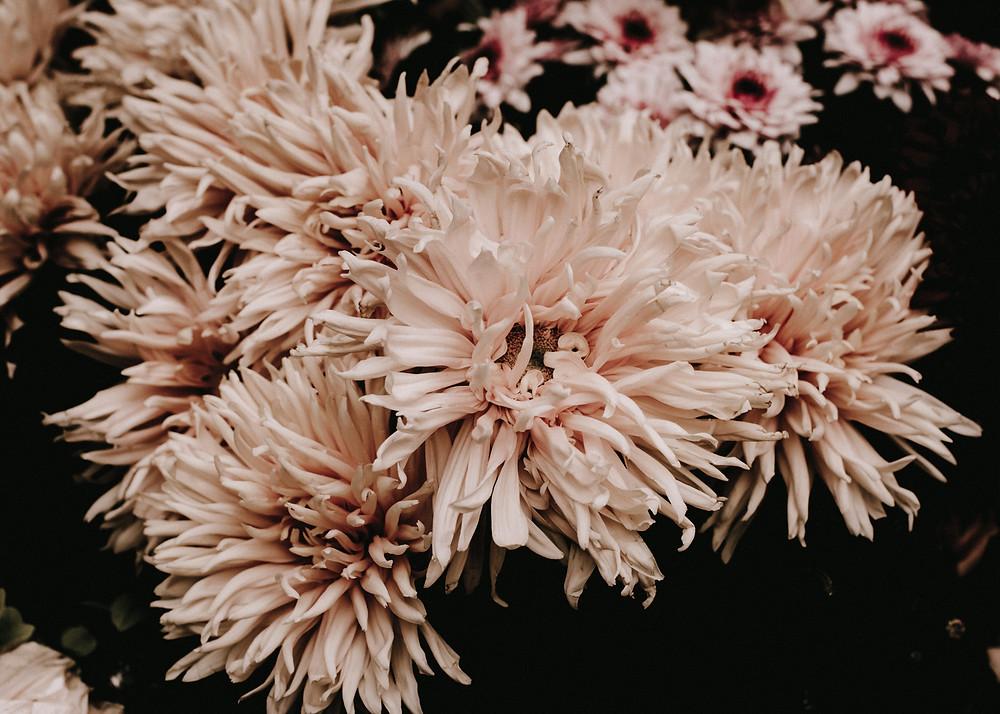 Flores - Una boda de dos en Hotel Alfonso XIII