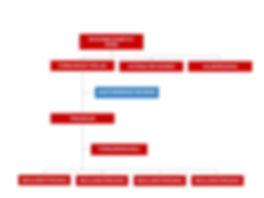 Organisationskarta_kortfattad.jpg