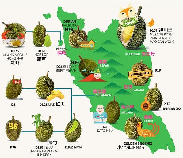 Durian Map.jpg