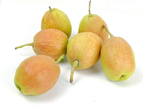 新疆庫爾勒香梨