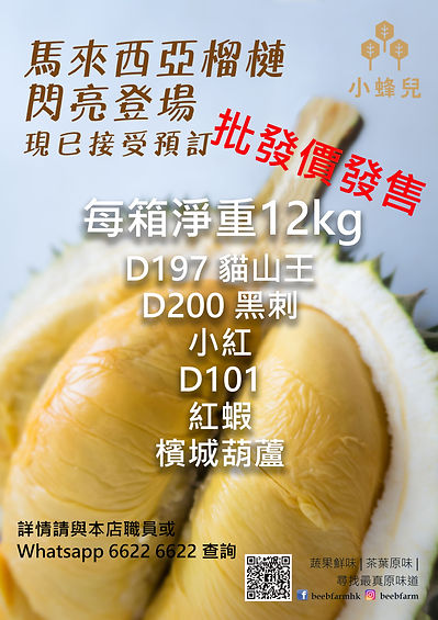 Durian 2021 jun.jpg