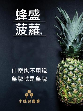 蜂盛菠蘿.jpg