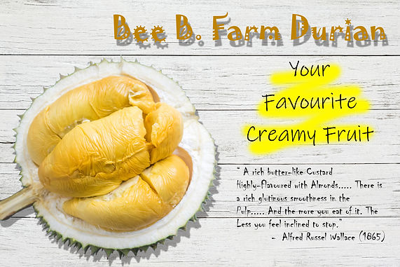 Durian with quote.jpg