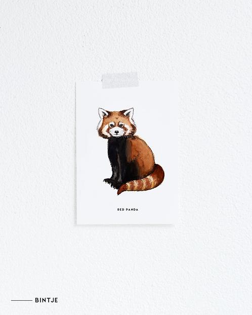 Postcard Rode panda