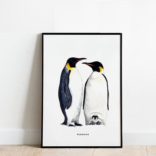 Poster Pinguins 30x40