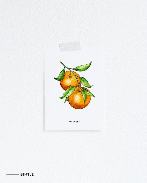 Postcard Oranges