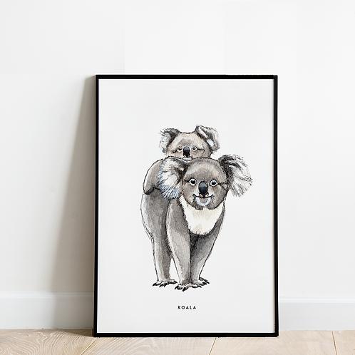 Poster Koala's 30x40