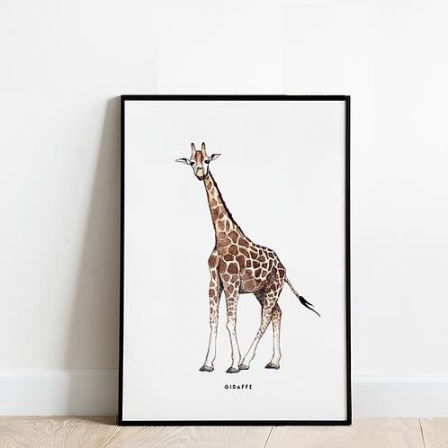 Poster Giraf 30x40